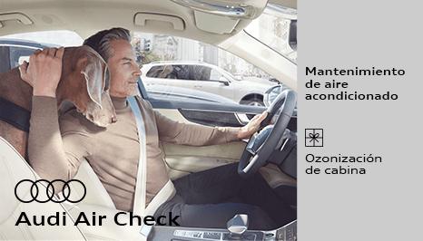 Audi Air Check