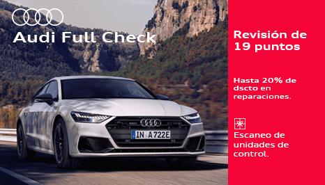 Audi Full Check